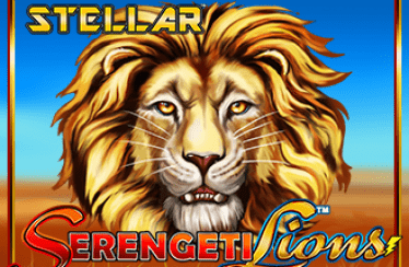 Lightning box - Serengeti Lions